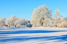 stock-photo-80423501-winter-landscape