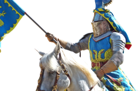 knight-2635930__340
